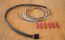 GL1800 Rollin' Eyes Wire to Vehicle Kit