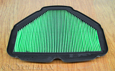OEM Honda 2018 GL1800 Air Filter