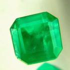 Oiled Emeralds at Wild Fish Gems