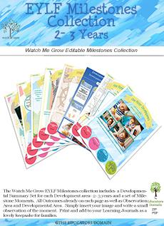 Developmental Milestones 2-3 years
