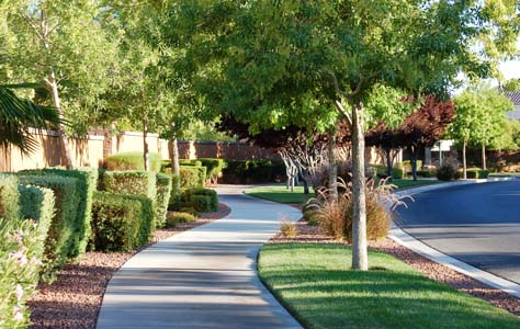 Willow Creek Homes for Sale