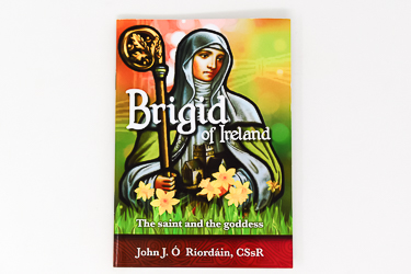 Saint Patrick Novena & Prayer Booklet
