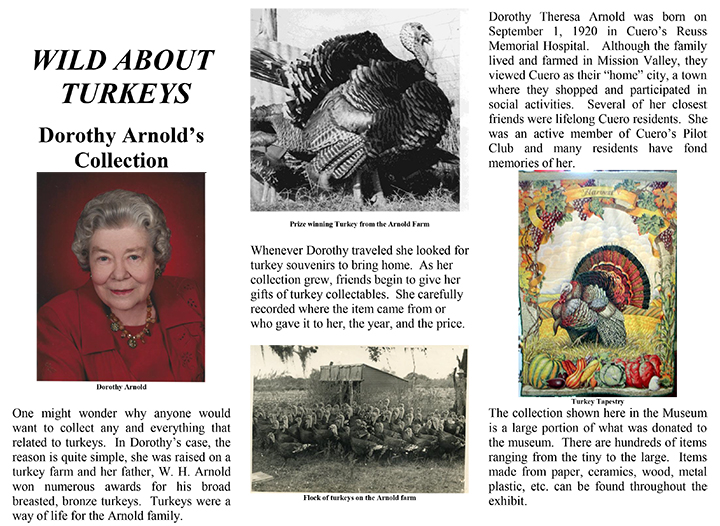 wild about turkeys Dorothy Arnold's Collection article section one