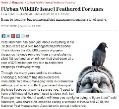 [Urban Wildlife Issue] Feathered Fortunes
