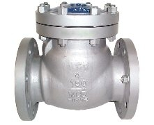 Check Valves; carbon and stainless steel