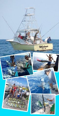 Hatteras Charter Fishing