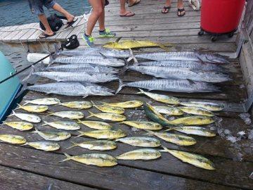 Hatteras Fishing Report