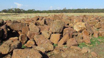 garden feature rock