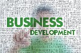 Business Development & Consulting