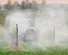 roundup cancer | roundup lawsuit