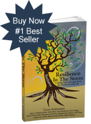 resilience in the storm by Tricia Andreassen