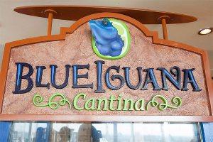BlueIgunana Cantina